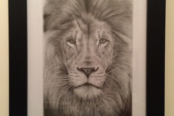 Finished drawing of a lion