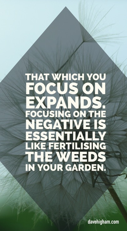 That which you focus on expands. Focusing on the negative is essentially like fertilising the weeds in your garden.